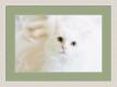 Moldura Decapé Branca de 4 cm-1056-3