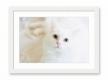 Moldura Decapé Branca de 3 cm-1085-3
