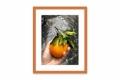 Moldura Laranja Brilhante de 2.4 cm-1095-3