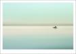 HORACIO GRACA - SUAVIDADES VIVIDAS-F1000119_MPR40X26-2