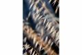RUI DAVID - PONTAS SOLTAS-F1000755_MPR60X40-0