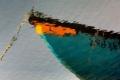 RUI DAVID - BARCO AZUL-F100075_MPR60X40-0